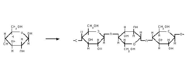 nanacellulose01