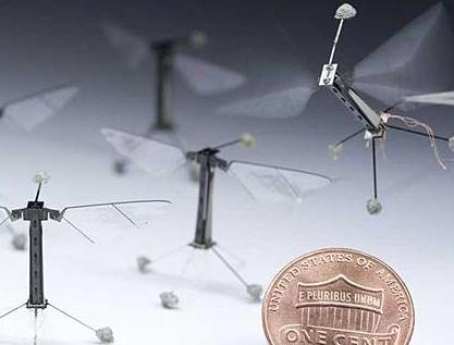 Biomímesis, tecnología inspirada en la naturaleza