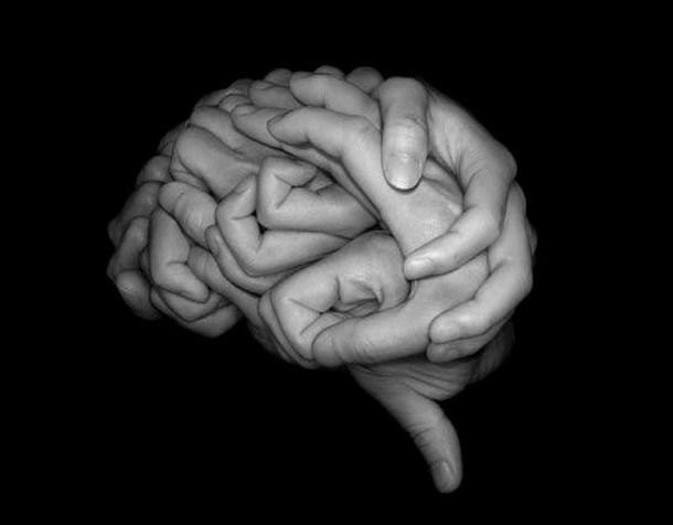 Brain-hands-TF