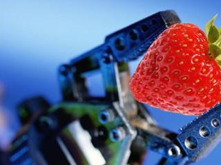 robot agricultura