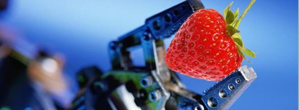 Cómo pueden revolucionar los robots la agricultura
