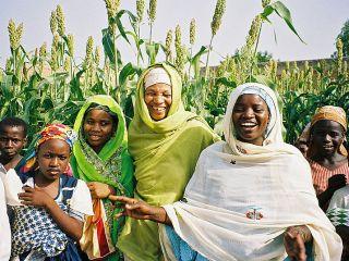mejorar la agricultura de África