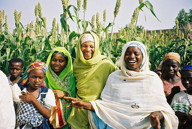 Mejorar la agricultura de África con SMS ya es posible