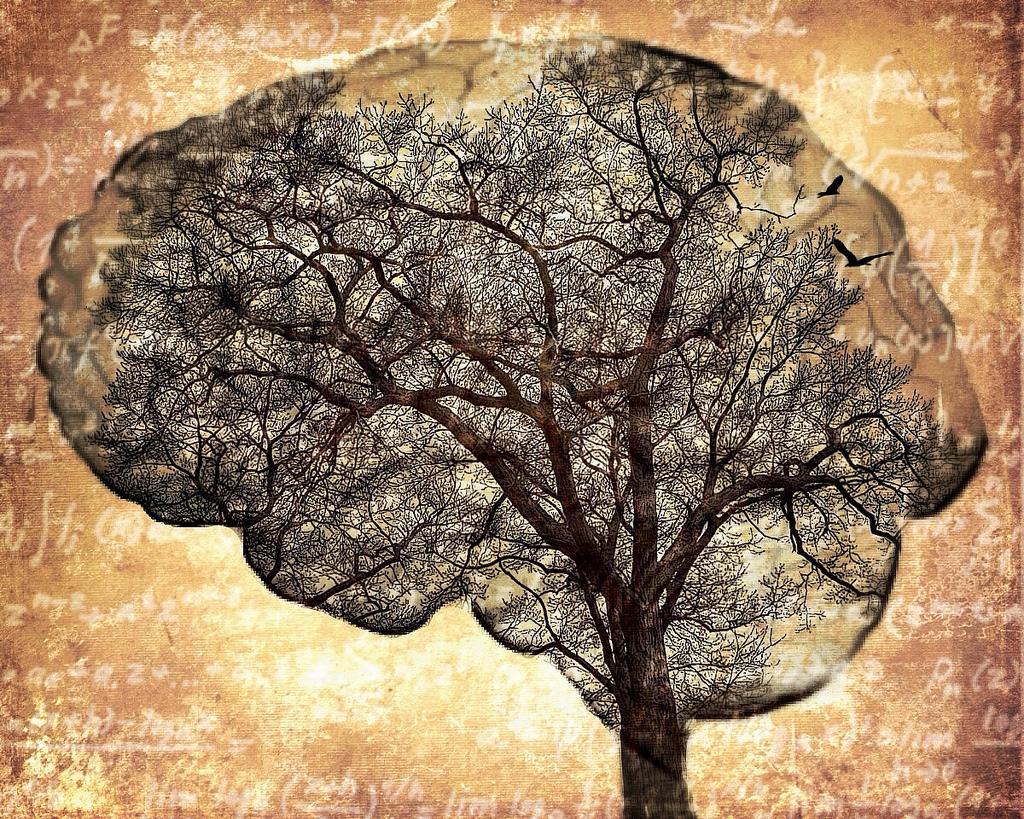 TC-2153, la proteína que podría eliminar los efectos del alzheimer