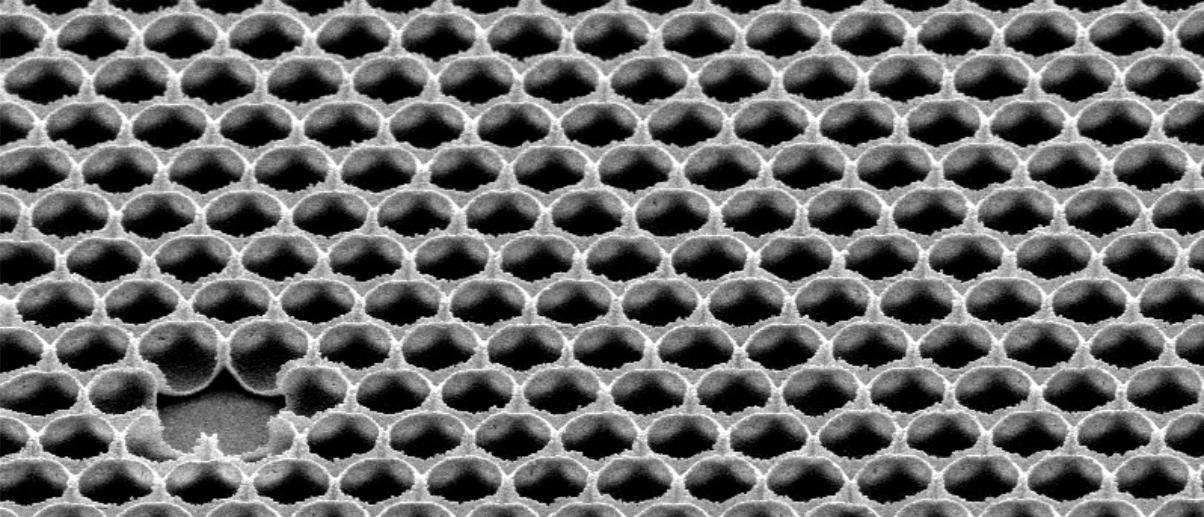 Así es el supercristal SLIPS, fabricado a partir de una planta carnívora