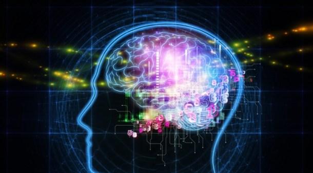 simular actividad neuronal