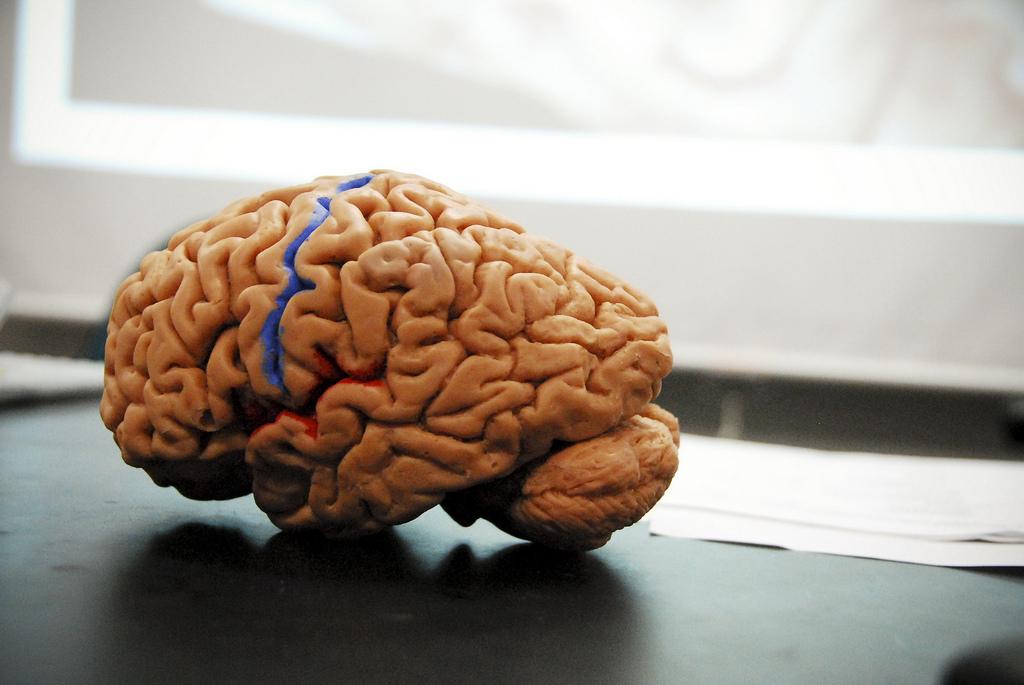 Crean un brazo robótico que se controla con el pensamiento
