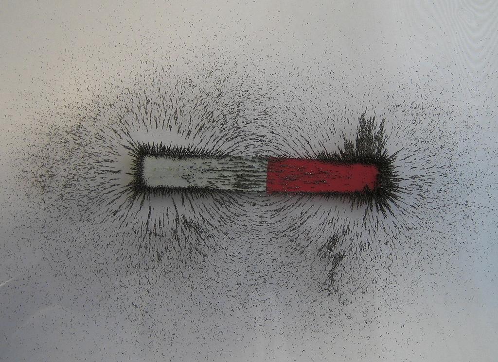 Usan el magnetismo para aislar por primera vez células madre