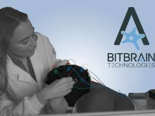 BitBrain