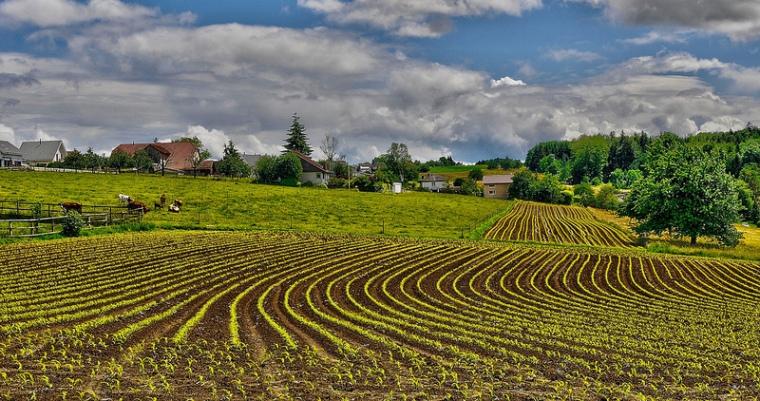 La agrotecnología, una apuesta segura para las startups