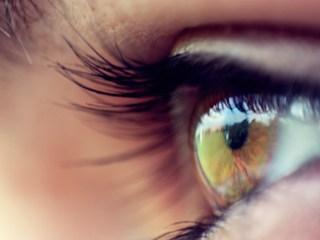 bionic retina