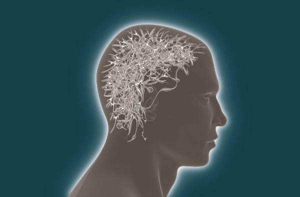 Lo que nos hace humanos: la revolución del cerebro