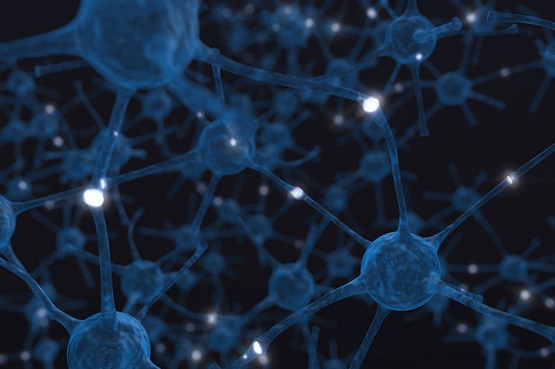 Consiguen crear neuronas humanas a partir de una muestra de sangre