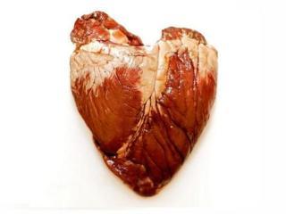 tejido cardiaco artificial