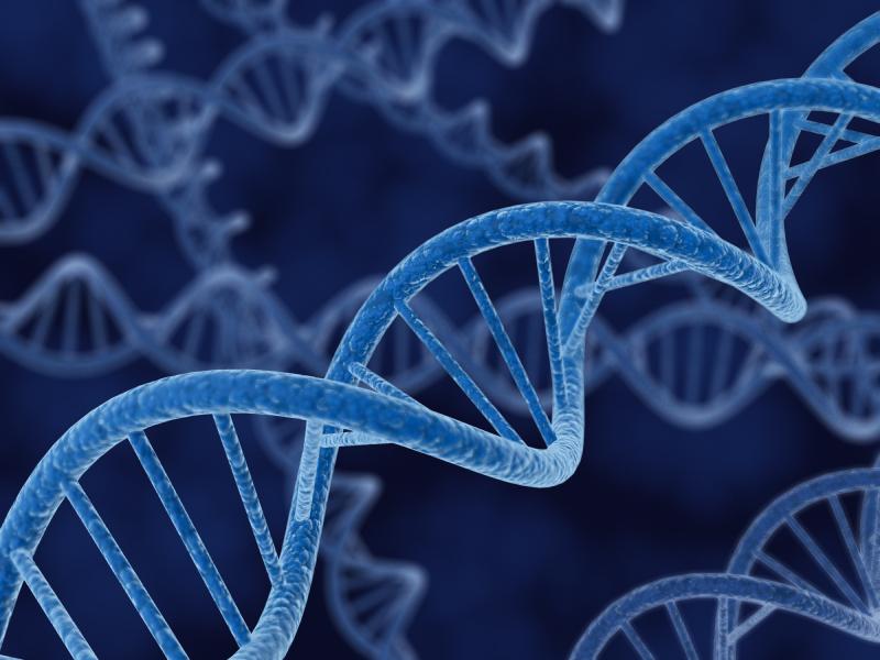 Errores en el software pueden ser detectados con estos algoritmos genéticos