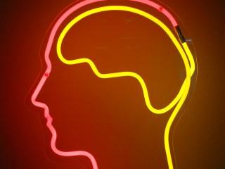 modelo matemático que predice los recuerdos
