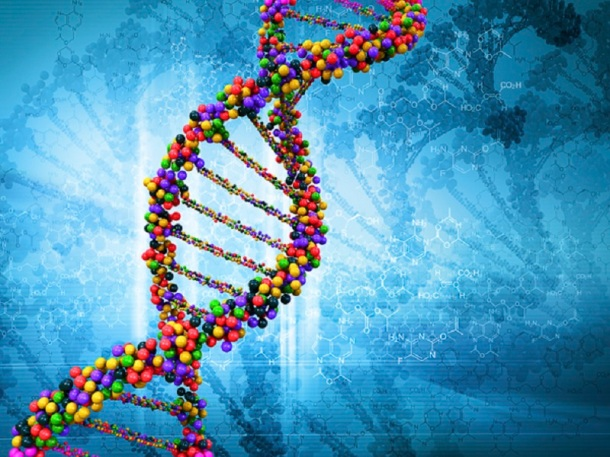 archivo europeo del genoma