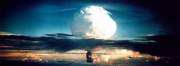 ¿Es cierto que las cucarachas podrían resistir un desastre nuclear?