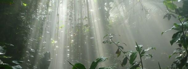 Biosphere 2, lo que aprendimos del mayor laboratorio artificial del mundo