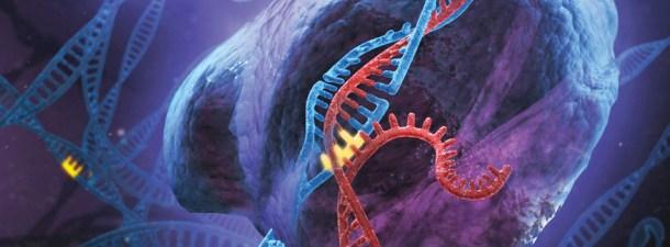 La controvertida investigación de He Jiankui: asegura haber creado dos bebes modificados genéticamente