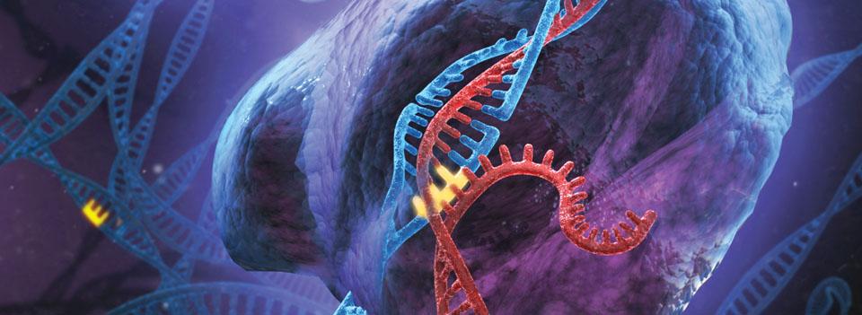 La proteína que ya está cambiando la tecnología: éstas son sus aplicaciones