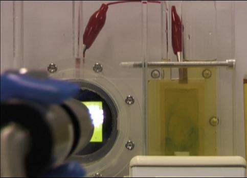 Logran fotosíntesis artificial más eficiente que la producida por plantas