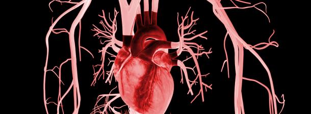 Los parches biónicos para el corazón podrían ser una gran alternativa a los trasplantes
