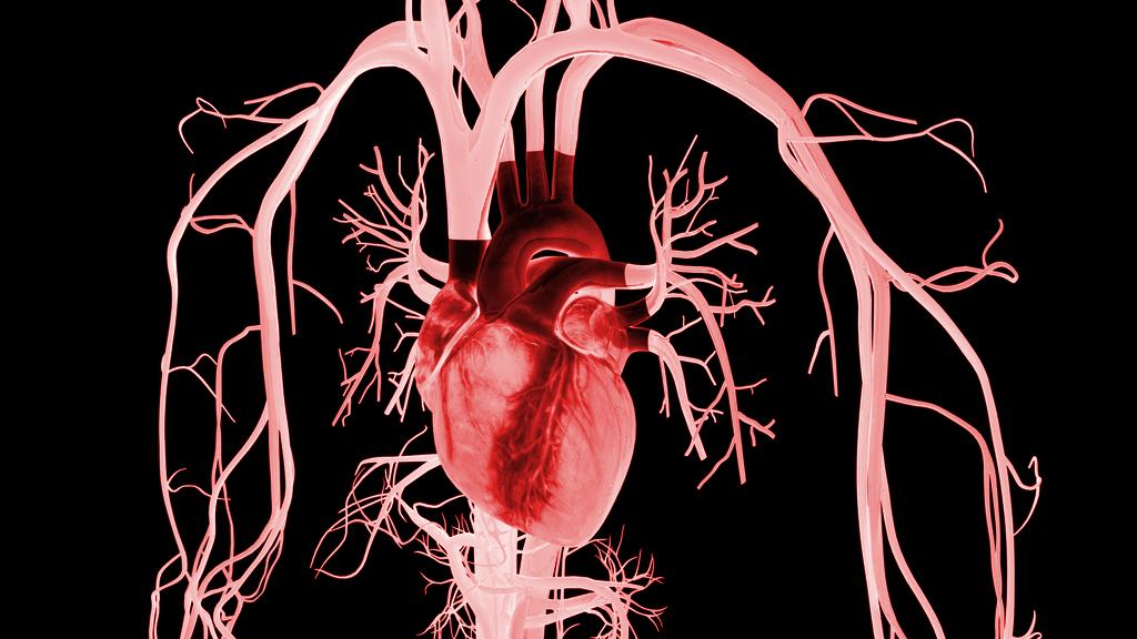 Inyectan por primera vez metal líquido en el corazón: así de espectacular luce por dentro