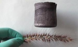Aerogel grafeno