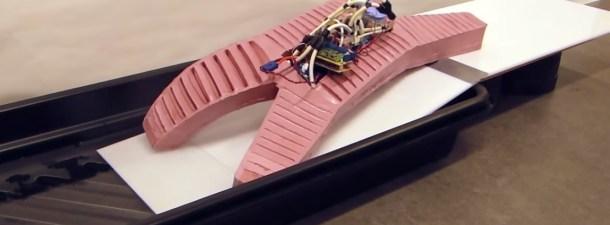 Este robot autónomo es capaz de cargar con hasta 8 kg de peso