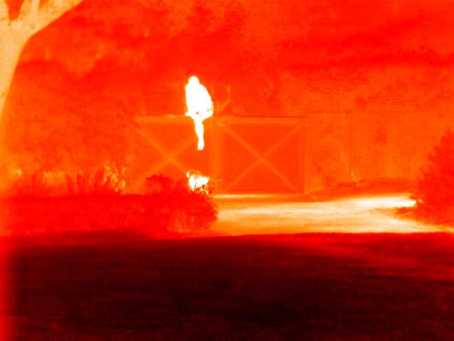 Seek Thermal convierte tu móvil en una cámara térmica