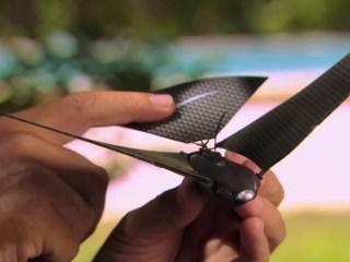drone en forma de pájaro
