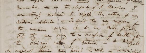 Darwin se digitaliza: restauran y publican 16.000 páginas sobre la teoría de la evolución