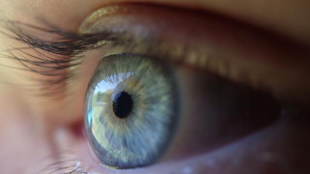 Aplicaciones biométricas, una tecnología que llegará a los 770 millones de descargas en 2019