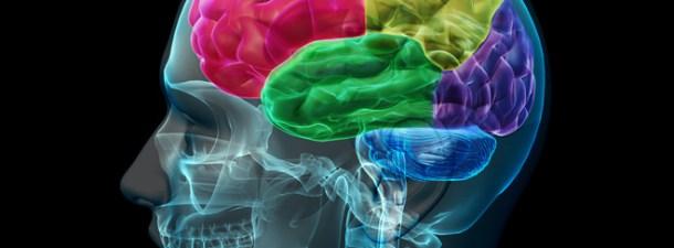 La nanotecnología crea robots para curar el cerebro