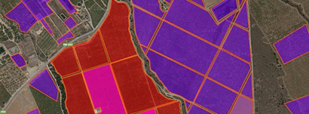 Visualnacert, cómo mejorar la productividad de los campos agrícolas mediante soluciones M2M