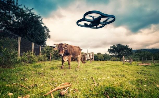 drones pastorear