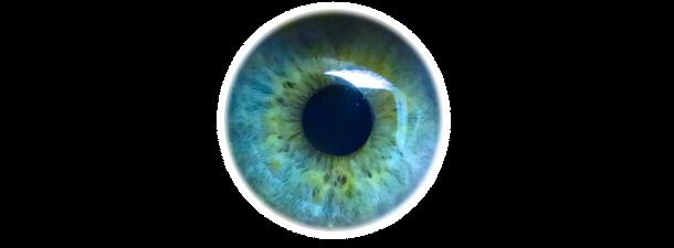 La nueva tecnología de reconocimiento de iris te podrá identificar a 12 metros de distancia