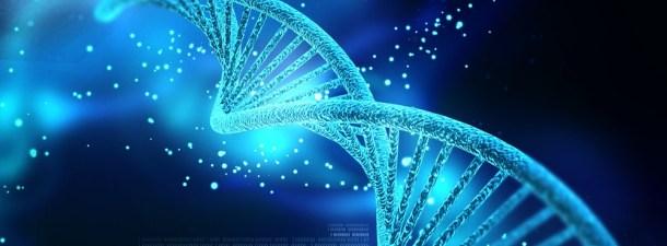 Descubre en células vivas que la clásica doble hélice no es la única estructura del ADN
