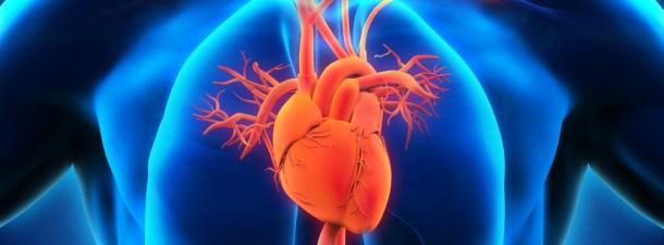 El sexto sentido que escondía el corazón