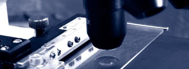 Cómo transformar tu smartphone en un microscopio por sólo tres céntimos