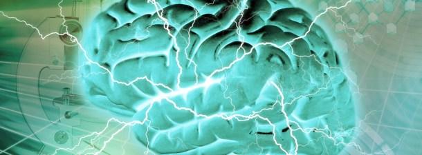 """Un experimento logra prevenir el estrés activando el """"centro de la memoria"""" del cerebro"""