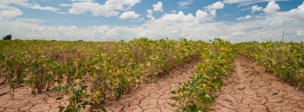 ¿Estamos concienciados sobre el cambio climático?