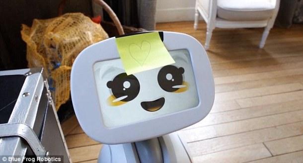 robot social doméstico