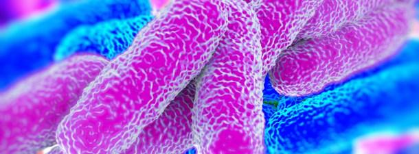 Cómo alteras (sin saberlo) el microbioma de tu cuerpo