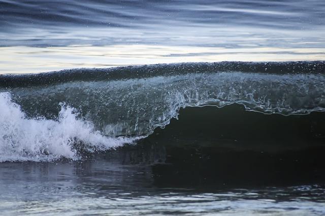 """Las sorpresas que esconden """"las zonas muertas"""" del océano"""