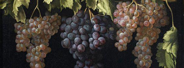 Científicos utilizan los residuos de las uvas para fabricar biocombustibles