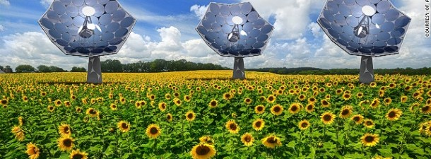 Ya conocemos un poco más sobre los «girasoles fotovoltaicos»
