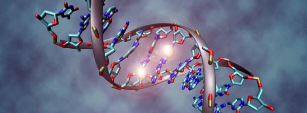 """La """"caja de herramientas"""" para reparar nuestro ADN protagoniza el Nobel de Química"""
