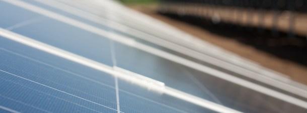 Con pigmentos naturales, las placas solares se hacen más eficientes